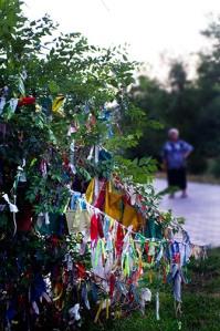 Tree of Prayer Flags